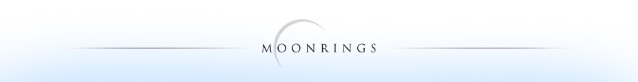 luxury honeymoons, anniversaries, destination weddings, and special occasion travel - MoonRings